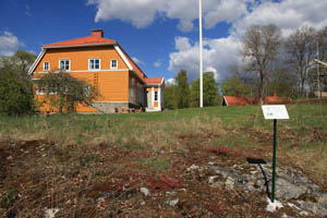 Picture of The Immigrant Garden - Herbarium of ancient and recent introductions to the Saari Manor